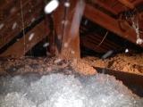 Insuflation de Ouate de cellulose sans sel de borre